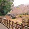 市川市動植物園に行ってまいりました。