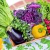 この野菜って冷蔵庫に入れない方がいい!?知っておくべき保存法。