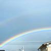 虹の金曜日