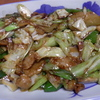 幸運な病のレシピ( 1697 )昼 :回鍋肉(ホイコーロ)、おでん