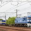 第544列車 「 新塗装となったEF210-107を旬のうちに狙う 」