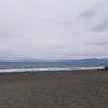 トレジャーハンターに俺はなる! って言う息子と平塚の海岸に行ってきました。