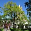 モスクワの街歩き(14)