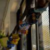 ローカル線で行くゆるい旅!台湾の猫村に行ってみた!!