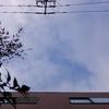 2019年3月1日(金)くもり → 晴れ