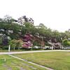 画像追加✩つつじ満開@本荘公園