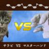 猫VSマスターハンド