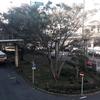 藤沢駅南口の再整備