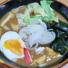 3月29日(日)雪の一日と、昼食のカレーうどん。