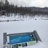 道東:摩周湖近くの青い池「神の子池」が想像よりずっと青く澄んでいた話