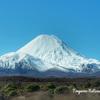 【タウポ観光】2日目~富士山?いや違う、ここは世界遺産トンガリロ国立公園