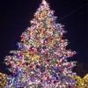 恵比寿のイルミネーションは宝石のようなツリーとバカラの巨大シャンデリア