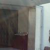 館蔵品展 江戸の花鳥画@板橋区立美術館 2017年10月9日(月)