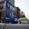 古代の奈良は難波や堺に連なっていた。となれば1300年前の大阪は奈良そのもの。さて、さて、はたして・・・。