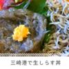 生しらす丼がめちゃうまぁぁぁ!な三崎港の『本まぐろ 海の幸』
