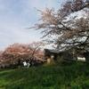 とてもいいお天気だった。