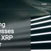 Ripple(リップル / XRP)のXpring(スプリング)が激アツな理由【徹底解説】