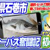【宮城県の釣り55】 初心者・シーバス奮闘記→連釣ヒット!愛してるぜキャストでヒット【石巻中瀬対岸】