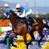 【京都新聞杯】2000m以上未経験は分が悪い。消耗戦ならこの馬!