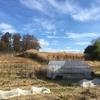 畑の冬支度①~青草を載せる、シカよけ柵を作る~ 追記:モズのはやにえ