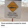 ハワイで海のトラブル
