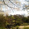春の花庭園