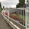 仙川沿いランニング〜丸池雑木林公園と勝渕神社のそばを走りました〜