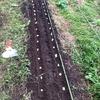 土壌改良を考える