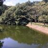 【鎌倉】朝食を食べに静かな散在ガ池森林公園へハイキング