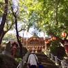 4/16 山名八幡宮 春の例大祭【特別催し】のお知らせ