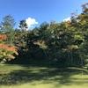 続・崇徳院を巡る旅、京都