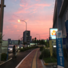 2020年06月03日クソ散歩 ~ニトリ~