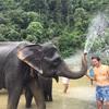 【スマトラ旅行】ジャングルをゾウに乗ってトレッキング「タンカハン」