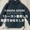 カナダグースのダウジャケットの評判は?1シーズン着用した感想をお伝えします