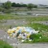 多摩川でバーベキューをやる人達の資質を図る