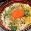 【ダイバーシティ東京プラザ】橙色の卵黄が太陽のように輝く「鶏味座」の山椒親子丼