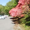 花立峠(那須烏山市)でロング走~奥武蔵ウルトラに向けて~