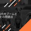 中国の犬ブームとその問題点