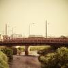 今日の撮りPhoto - 風景 LEICA DG MACRO- ELMARIT 45mm/F2.8 -