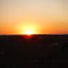 ついに旅の終着地「タリファ」へ🌅 アフリカ大陸が見えた......