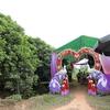 ベトナムの田舎の結婚式に参加してみた