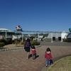 2019.3 県立辻堂海浜公園