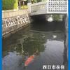 四日市ジャズジャーナル6月号 Yokkaichi Jazz Journal vol.10