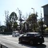 令和3年3月3日京都いけずな旅探訪 護王神社①