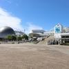 【圧倒的な大水塊】名古屋港水族館の魅力を解説【雨の日のおでかけにも】