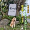 【わんこと旅】 (宿)Wa!王国 句の郷 ≪熊本県≫