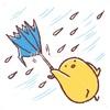 まるで 冬の嵐    こんな日は傘は役に立ちません!!   お昼ごはんは「すき家」のドライブスルーで!!