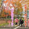 紅葉がキレイな公園までドライブしてきたですよ!