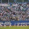 【東京ヤクルトスワローズ】ホームゲーム主催試合観客動員数まとめ