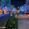 クリスマスイルミネーション けやき坂の郵政白ポスト